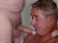 mature threesome daddy blowjob gay