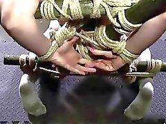 bdsm bdsm extremo pornográficos vídeos bdsm escravidão
