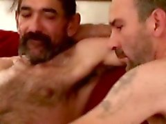 amateur gay bears gay blowjob gay gays gay