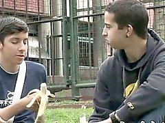 amateur gay blowjob gay gays gay outdoor gay