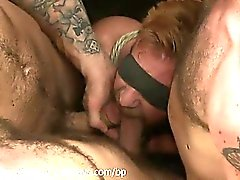 blowjob gays group sex