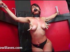 bdsm femdom spanking bondage