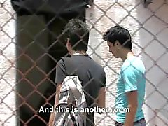 gay gays latin