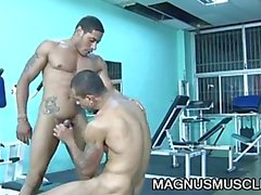 gay latino gay-muscule hunks