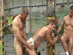 threesome hunks fuck