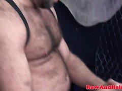 bareback gay bears gay blowjob gay