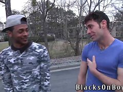 big cocks gay black gays gay blowjob gay gays gay hd gays gay