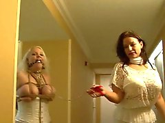bbw bdsm big boobs bondage lingerie