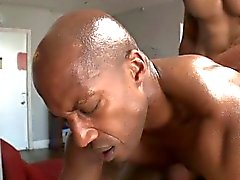 gays gay interracial gay massage gay muscle gay