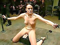 bdsm disgrace humiliation