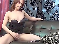 amateur shemale hd shemales shemale masturbation shemale shemales shemale solo shemale