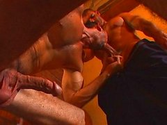 gay gay couple oral sex anal sex caucasian