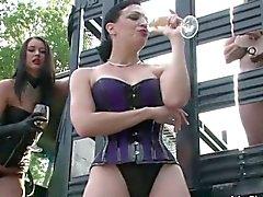 bdsm bisexual blowjob femdom