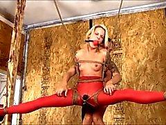 bdsm bondage bound tied-up