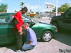 big cocks black gays blowjob