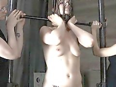 bdsm babe brunette fetish