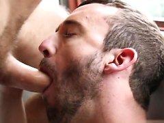 avsugning bögen homofile gay snyggingarna gayvänligt