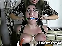 big tits bondage bound brunette