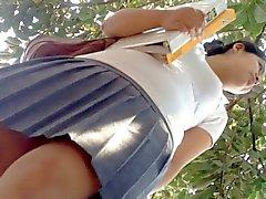 amateur upskirts hidden cams flashing mexican