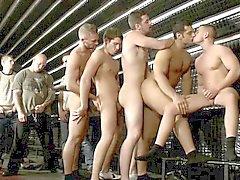avsugning bög homofile gayvänligt gruppsex bögen
