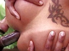 shemale oral sex anal sex brunette latin