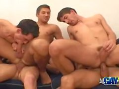 gay gay group sex masturbation