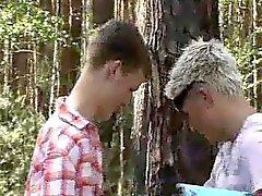 любительское гей геев гомосексуалистам открытый геем