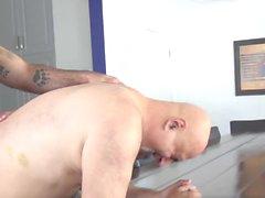 gay gay porn bareback bear blowjob