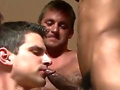 blowjob gay bukkake gay gays gay group sex gay