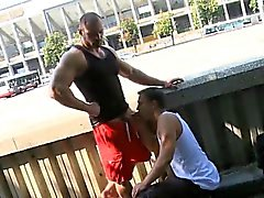 blowjob gay gays gay muscle gay outdoor gay