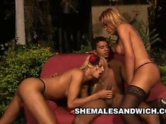 group bayan arkadaş shamale travestiler shamale