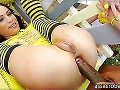 anal ass babe big cocks brunette