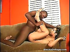 big cocks gay blowjob gay gays gay interracial gay