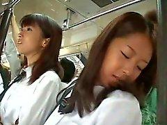 asiático público sexo oral peludo caralho buceta
