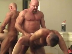 bears muscle hairy blowjob