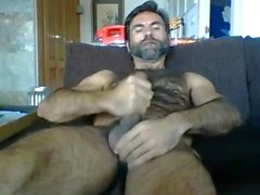 Urso batendo punheta