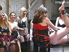 bdsm blondine brünett domina