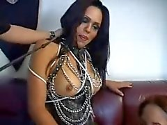 bareback bdsm blowjobs ladyboys