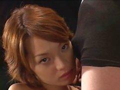 eurosmut japonais bébé brunette