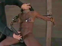 bdsm les mieux notés esclavage big clits femmes musclées