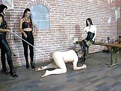 bdsm spanking femdom foot fetish