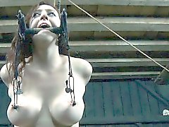 bdsm babe big boobs fetish
