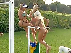babes big butts brasilianer