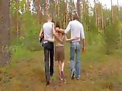 boquete floresta ruivo russo