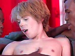 gay big cocks black gays group sex