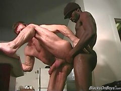 gay big cocks blowjobs gay porn