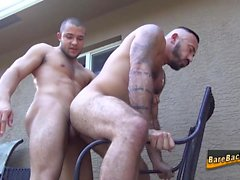 gays gay hd gays gay hunks gay latin gay men gay