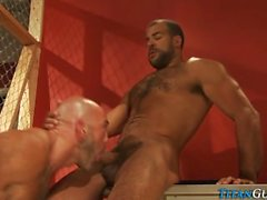 titanguys beards ass-pounding