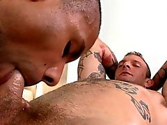 blowjob glad homofile gayvänligt massage bög män bög