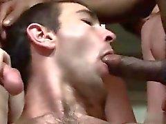 blowjob bög ansiktsbehandling glad homofile glad gruppsex gay